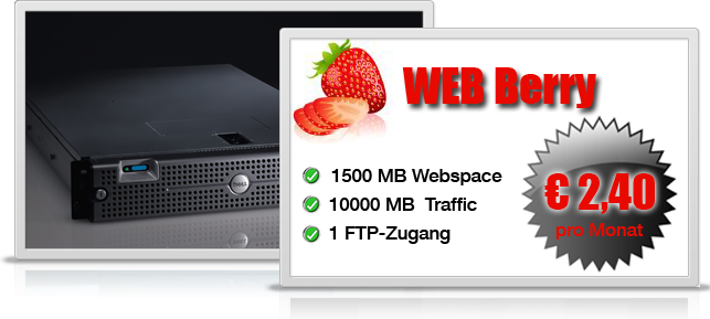 Webhosting 4 You: WEBBerry